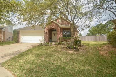 League City Single Family Home For Sale: 6146 Dunbar Court