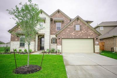 Lakes Of Savannah Single Family Home For Sale: 4811 Gingerwood Trace Lane