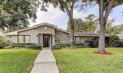 Spring Valley Single Family Home For Sale: 1213 Ben Hur Drive