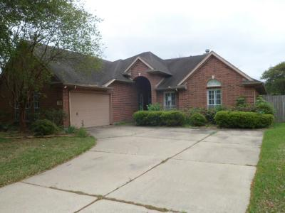 Pearland Single Family Home For Sale: 3518 S Peach Hollow Circle