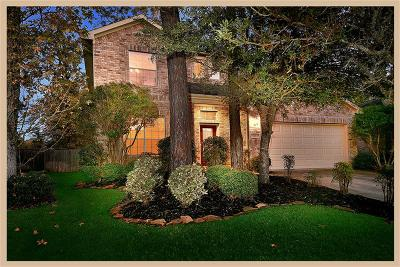 The Woodlands Single Family Home For Sale: 22 Ebony Oaks Place