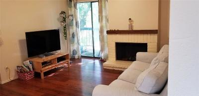 Houston Condo/Townhouse For Sale: 7900 N Stadium Drive #24