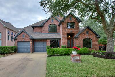 Sugar Land Single Family Home For Sale: 427 Brook Shore Court