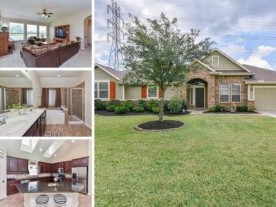 Tomball Single Family Home For Sale: 11302 Crestbrook Park Lane