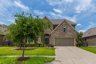 Fort Bend County Single Family Home For Sale: 427 Cascade Oaks Lane