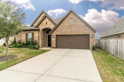 Cypress Single Family Home For Sale: 9111 Brampton Mill Court