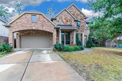 Houston Single Family Home For Sale: 14519 Hampton Green Lane