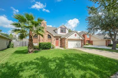 Sugar Land Single Family Home For Sale: 6511 Smoke Tree Lane