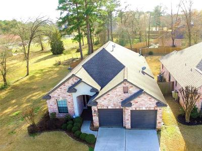 Willis Single Family Home For Sale: 14301 Summer Chase