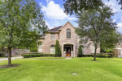 Harris County Single Family Home For Sale: 734 E Creekside Drive