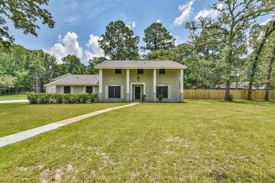 Houston Single Family Home For Sale: 1102 Southern Hills Road