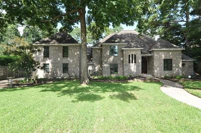 Houston Single Family Home For Sale: 4715 Breezy Point Drive