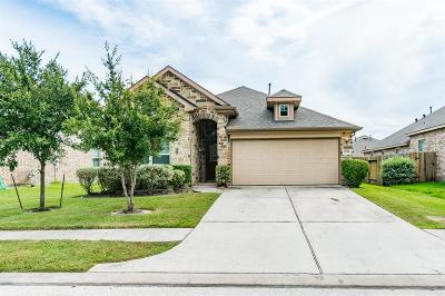 Baytown Single Family Home For Sale: 6718 Hunters Creek Lane