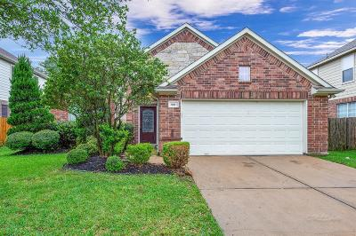 Katy Single Family Home For Sale: 20011 Still Manor Court