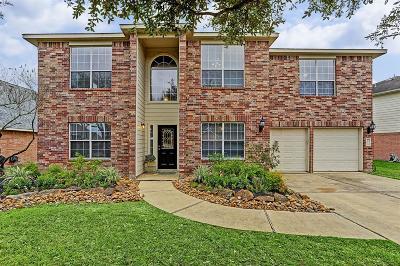Houston Single Family Home For Sale: 9914 Barr Lake Drive