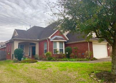 Manvel Single Family Home For Sale: 3639 Shady Grove Drive
