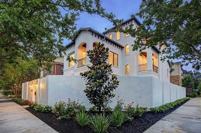 Houston Single Family Home For Sale: 2102 Park Street