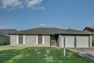 Fort Bend County Single Family Home For Sale: 2327 Rittenmore Drive