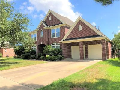 Katy Single Family Home For Sale: 3223 Brinmont Place Lane