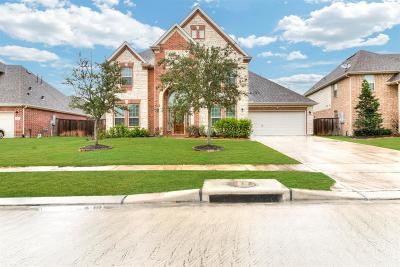 League City Single Family Home For Sale: 2612 Ivy Mist Court