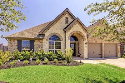 Shadow Creek Ranch Single Family Home For Sale: 13602 Lightning Falls Lane