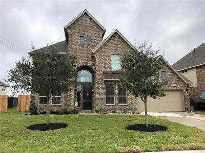 Friendswood Single Family Home For Sale: 4301 Evergreen Drive