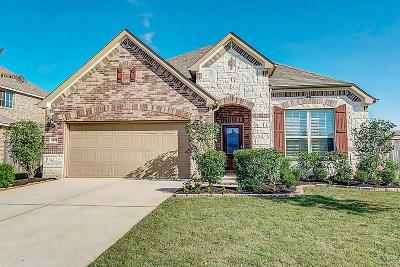 Katy Single Family Home For Sale: 4827 Kendra Forest Trl