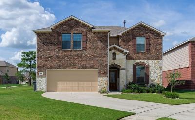 Cypress Single Family Home For Sale: 19818 Auburn Tree Drive
