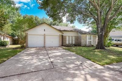 Katy Single Family Home For Sale: 807 Valley Ranch Drive