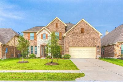 Rosenberg Single Family Home For Sale: 907 River Delta Lane