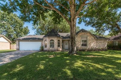 Friendswood Single Family Home For Sale: 901 Sandringham Drive