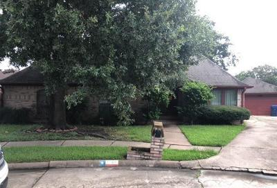 Fort Bend County Single Family Home For Sale: 2106 Redcliff Drive