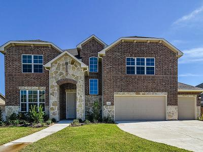 Pearland Single Family Home For Sale: 2021 Coventry Bay Drive