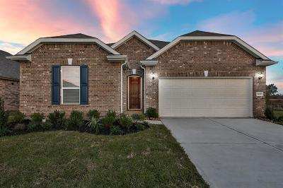 Katy Single Family Home For Sale: 1419 Buffalo Woods Court