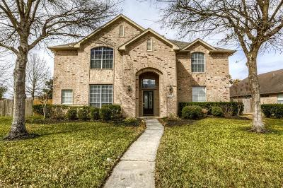 Dickinson, Friendswood Single Family Home For Sale: 1410 Eagle Lakes Drive