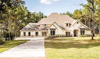 Single Family Home For Sale: 28303 Meadow Falls