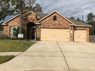 Houston Single Family Home For Sale: 18119 Banpo Court