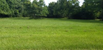 Tomball Residential Lots & Land For Sale: 1533 S Cherry Street