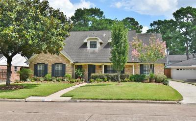 Houston Single Family Home For Sale: 1062 Bethlehem Street