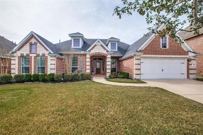 Galveston County, Harris County Single Family Home For Sale: 13534 Hammond Hills Lane