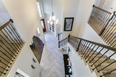 Single Family Home For Sale: 2911 Meadows Pond Lane