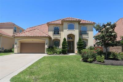 Houston Single Family Home For Sale: 9906 Vintage Villa Drive