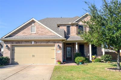 Pearland Single Family Home For Sale: 1502 Brook Hollow Drive