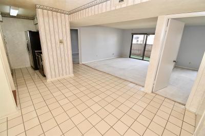 Houston Condo/Townhouse For Sale: 8525 Hearth Drive #24