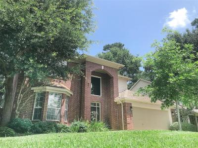 Houston Single Family Home For Sale: 3623 Mill Bridge Way