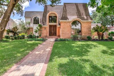 Houston Single Family Home For Sale: 926 Ivy Wall Drive