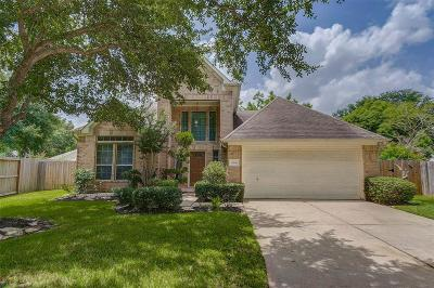 Katy Single Family Home For Sale: 3646 Brinton Trails Lane