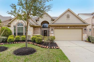 Missouri City Single Family Home For Sale: 6238 Ledger Lane