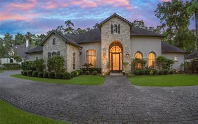 The Woodlands Single Family Home For Sale: 94 S Tranquil Path