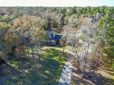 Huffman Single Family Home For Sale: 30007 Commons Royal View Drive